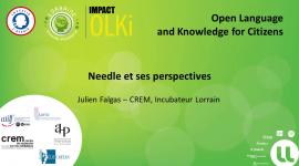 Needle et ses perspectives - Julien Falgas, CREM, Université de Lorraine
